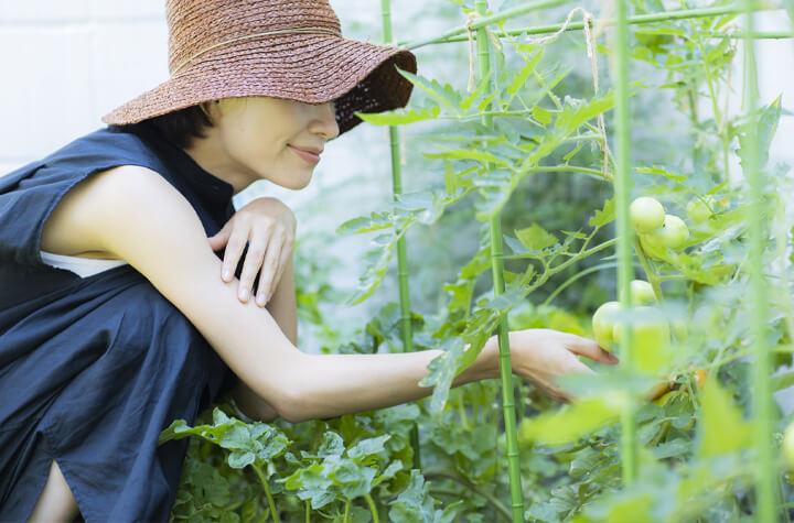 千葉で外構エクステリア工事を行うZOUSの家庭菜園を楽しむ庭